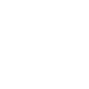 National Association of Latino Elected & Appointed Officials logo